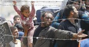 refugiados 8